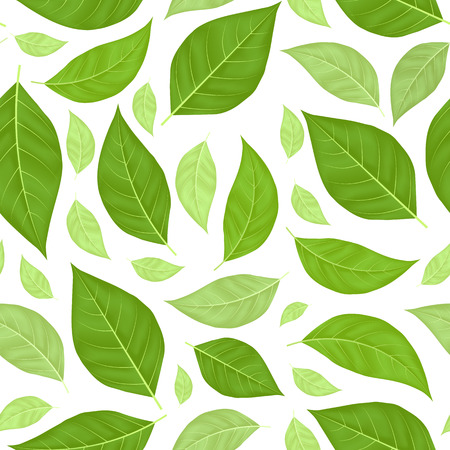 Green Leaves Seamless Pattern Background. Illustration