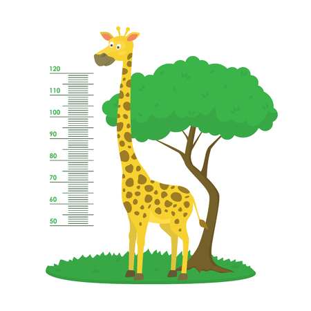 Cartoon Meter Wall with Giraffe and Tree Green Card Poster. Vector Illustration
