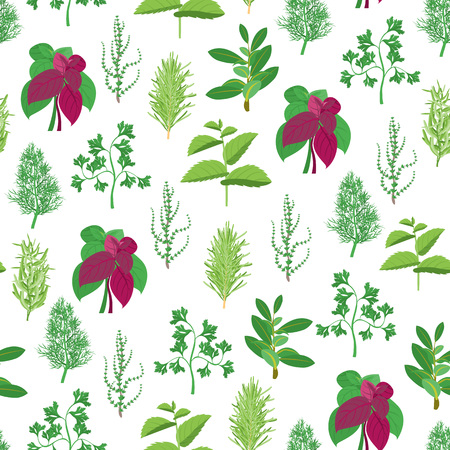 Herb Seamless Pattern Background Vector