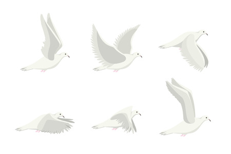 Cartoon White Dove Bird Set. Vector 矢量图像