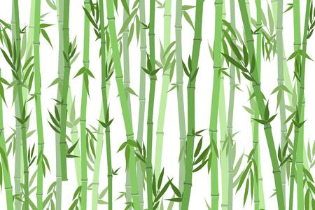 Dibujos animados de fondo de paisaje de bosque de bambú.