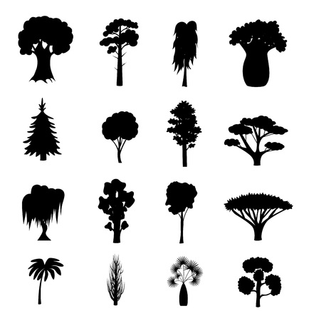 Silhouette Black Different Tree Types Icons Set. Vector