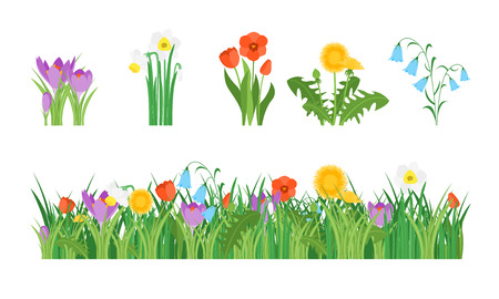 Cartoon Garden Flowers and Element Set. Vector Stock Photo