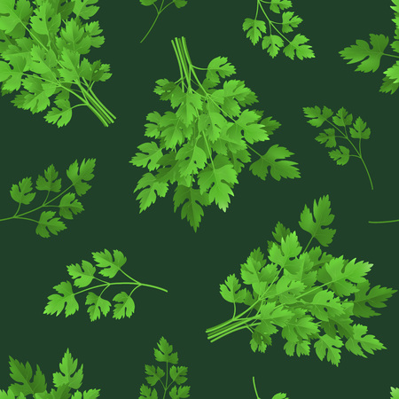 Realistic Detailed 3d Green Raw Parsley Seamless Pattern Background. Vector