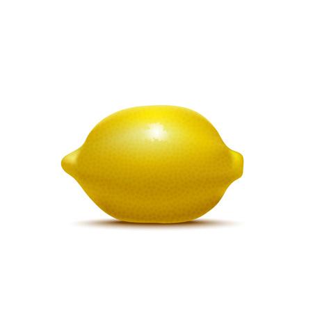 Realistic Detailed 3d Whole Lemon. Vector