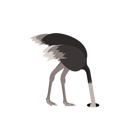Cartoon Ostrich Gray Bird Feeling Fear Flat Design Style Isolated on White Background. Vector illustration of African Exotic Animal Ilustrace