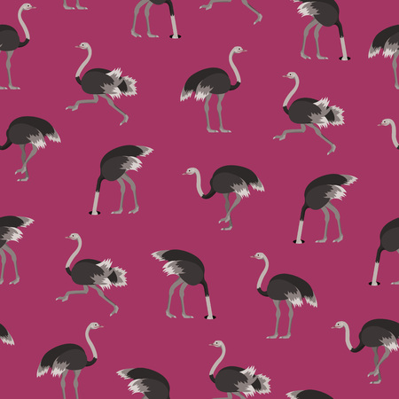 Cartoon Ostrich Gray Bird Seamless Pattern Background Flat Design Style. Vector illustration of African Exotic Animal