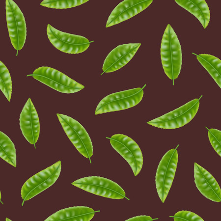 Realistic Detailed 3d Elements Set of Tea Seamless Pattern Background Fresh Green Leaves Plant. Vector illustration