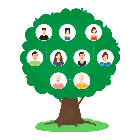 Cartoon Family Tree Infographics Concept Card Poster Include of Mother, Father, Child, Sister and Brother. Vector illustration