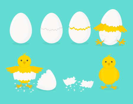 Cartoon Chicken Hatching Phases Set on a Blue. Vector
