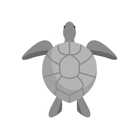 Cartoon Big Grey Turtle on a White Background . Vector