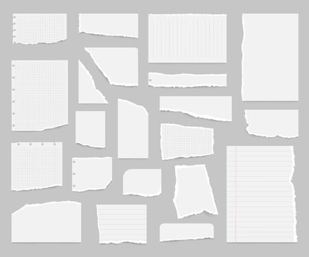 Realistic Detailed 3d Paper Scraps Set. Vector
