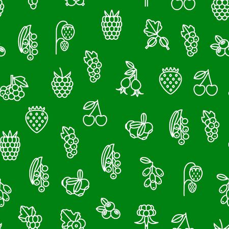Berries Signs Thin Line Seamless Pattern Background. Vector