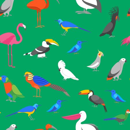 Cartoon Color Exotic Bird Seamless Pattern Background. Vector