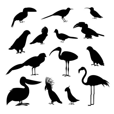 Cartoon Silhouette Black Exotic Bird Icon Set. Vector Ilustração