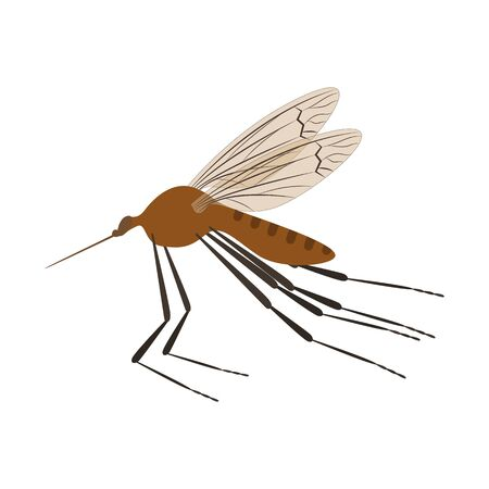 Cartoon Color Mosquito Insect on a White. Vector