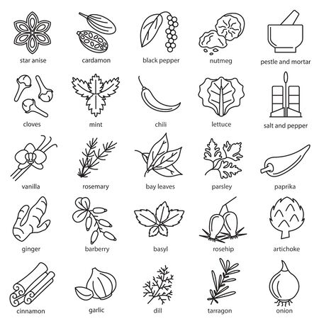 Spices Condiments Sign Black Thin Line Icon Set. Vector Ilustracja