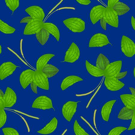 Realistic Detailed 3d Green Leaves Plantago Major Seamless Pattern Background Organic Nature Medicinal Herb . Vector illustration of Healthy Plantain Foliage Illusztráció
