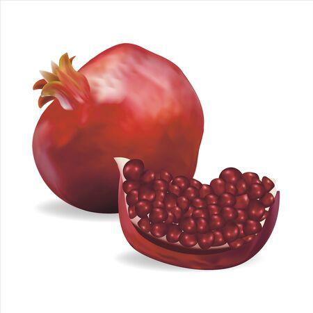 Realistic Detailed 3d Fresh Pomegranate Set. Vector Иллюстрация