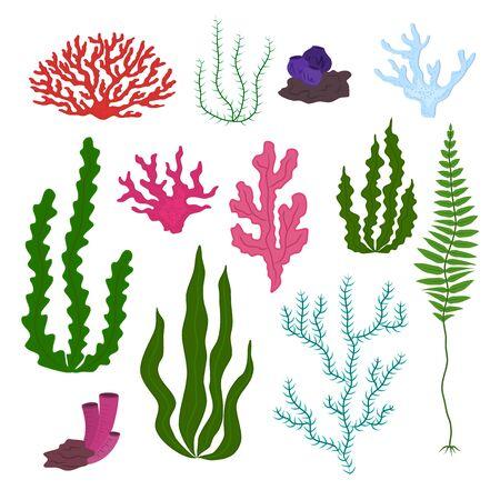 Cartoon Color Underwater Marine Flora Icons Set. Vector