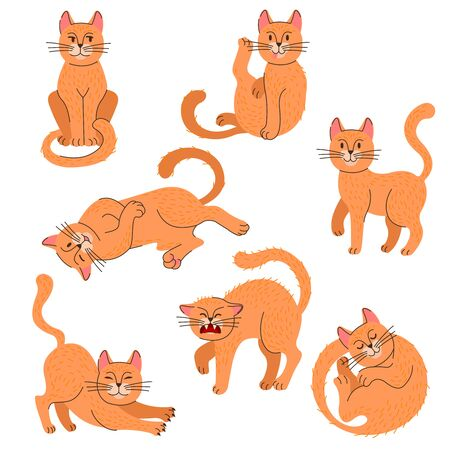 Cartoon Color Cat Icon Set with Lineart Elements. Vector