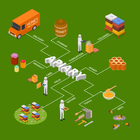 Apiary Concept Infographics 3d Isometric View. Vector