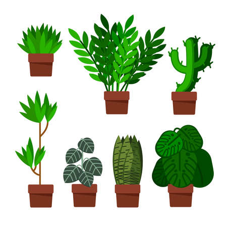 Cartoon Different Green Plants Pots Icons Set Flat Design Style Include of Cactus and Monstera. Vector illustration of Icon Plant 向量圖像