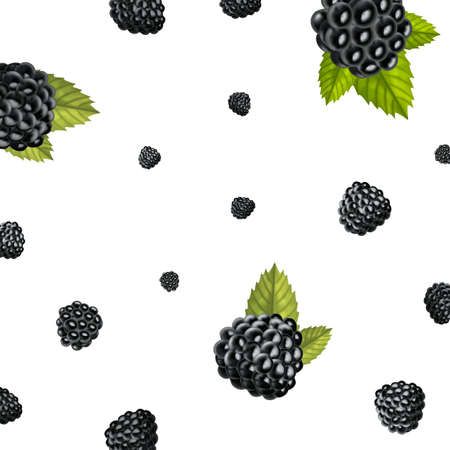 Realistic Detailed 3d Raw Blackberries Berries Seamless Pattern Background. Vector
