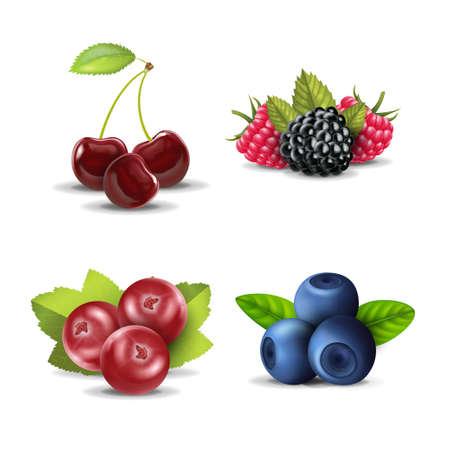 Realistic Detailed 3d Raw Berries Set. Vector Ilustração