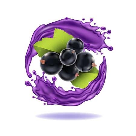 Realistic Detailed 3d Black Currant Berries with Splash Juice. Vector
