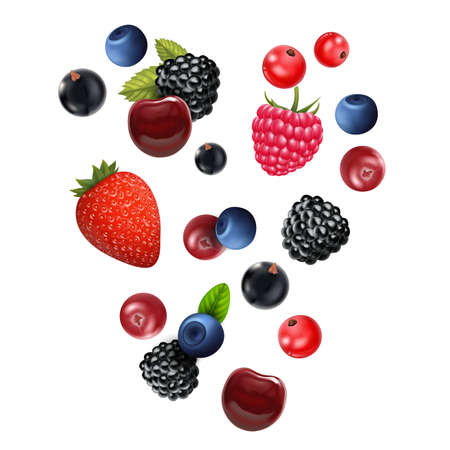 Realistic Detailed 3d Different Types Raw Berries Set. Vector