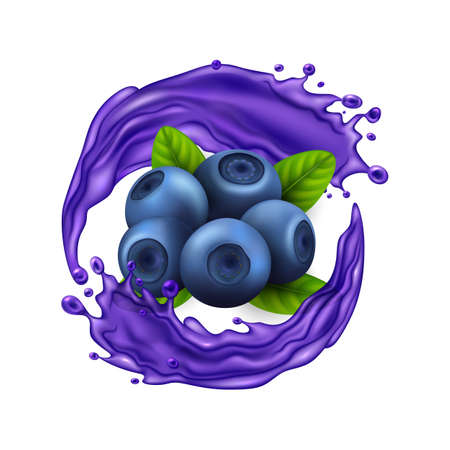 Realistic Detailed 3d Raw Blueberry Berries with Splash Juice. Vector Ilustração
