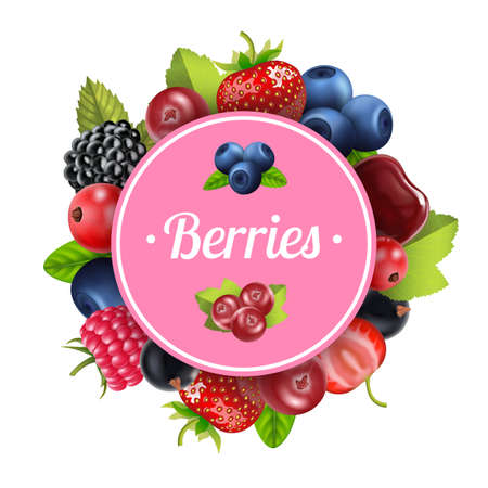 Realistic Detailed 3d Berry Round Design Template Banner. Vector