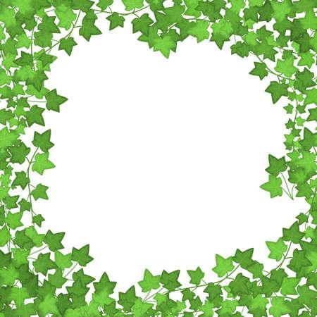 Ivy Green Leaves Frame or Border. Vector Ilustracja