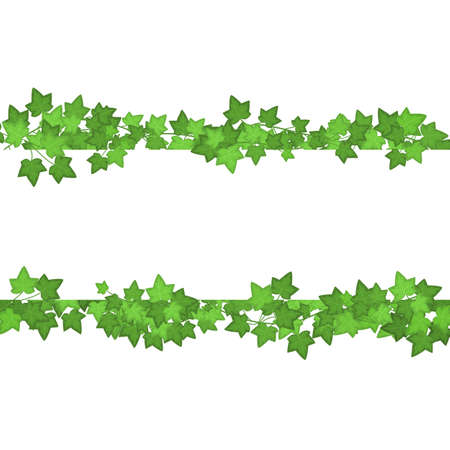 Ivy Green Leaves Different Types Set. Vector Ilustração