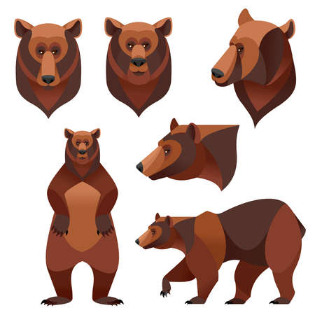 Cartoon Color Different Grizzly Bear Icons Set. Vector
