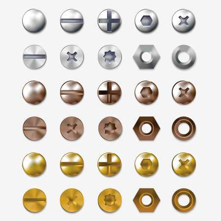 Realistic Detailed 3d Steel or Brass Heads Screws Set. Vector