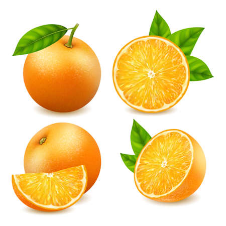 Realistic Detailed 3d Fresh Ripe Whole and Slice of Oranges Set. Vector