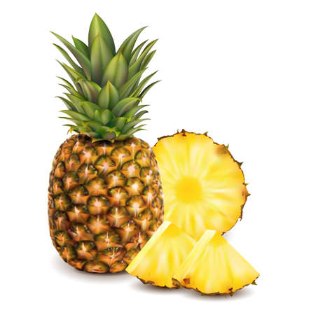 Realistic Detailed 3d Whole and Round Slices Pineapple Set. Vector