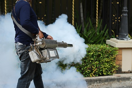 disease control: Fogging mosquito to prevent of dengue fever
