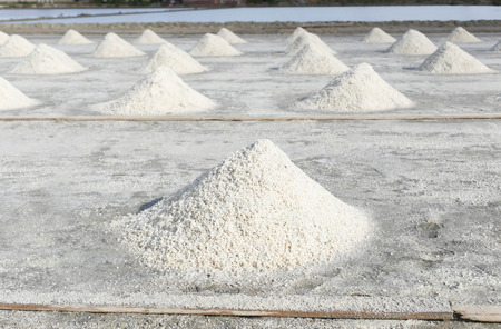 Row of salt in Salt pan in Thailand photo