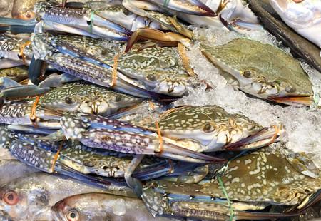cangrejo: Cangrejo azul fresco o cangrejo de caballo en el hielo en el mercado en Tailandia