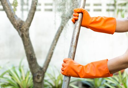 work gloves: Woman doing a gardening use Shovel with orange gloves