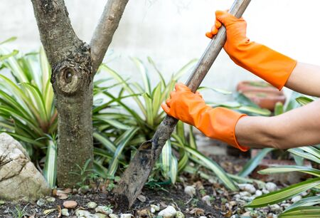 Woman doing a gardening use Shovel with orange gloves