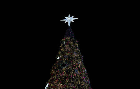 topper: Christmas tree at night topper star on black background Stock Photo