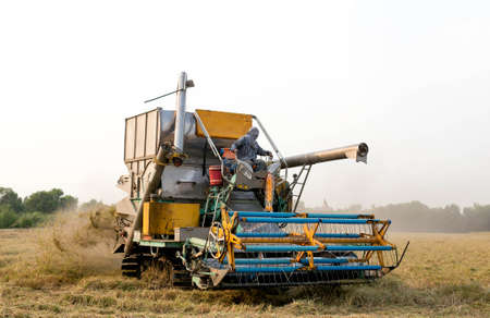 agriculture machinery: Agriculture Industrial harvesting machinery working in rice field