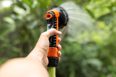 Gardener watering plant with hose in the garden Stock Photo