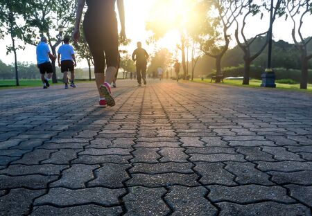 well being: Group of people exercising in the park in sunrise morning well being concept