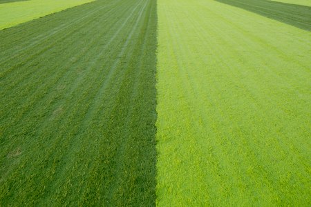 New soccer field with light and dark green artificial grass