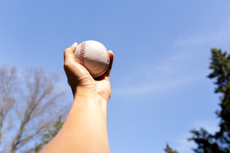 Hand holding baseball against blue clean sky with tree